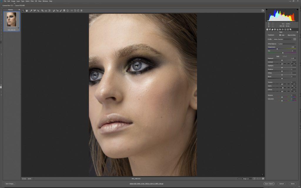 Adobe Camera RAW software